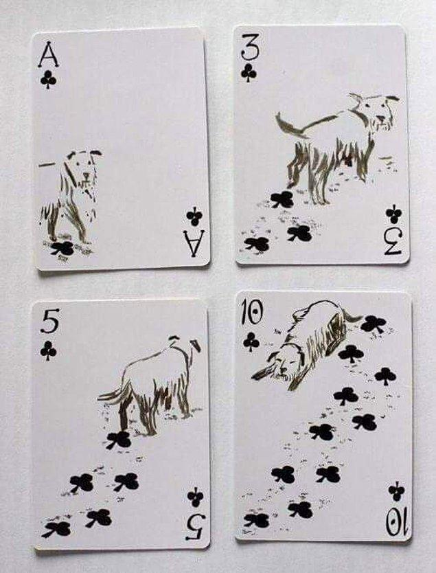 """12. """"Bu oyun kartları."""""""