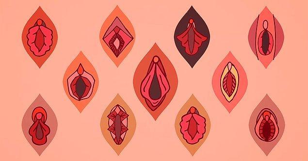10. Vajinamın rengi koyu, bu normal bir durum mu?