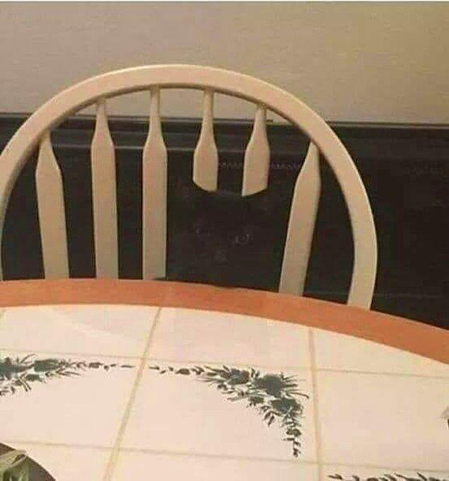 9. Bu sandalye kırık değil sadece bir misafiri var.