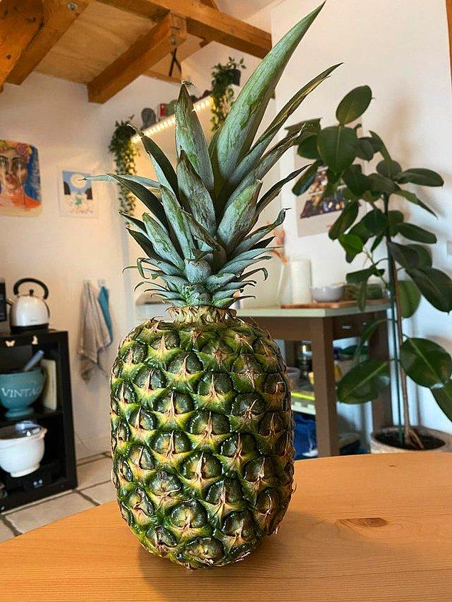 """7. """"Sevgilim seviyor diye ananas aldım. Burada olması gereken zamandan 20 dk önce gelemeyeceğini söyledi. Ananasa alerjim var."""""""