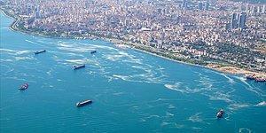 10 Gün Önce AKP ve MHP Oylarıyla Reddedilmişti: TBMM'de Müsilaj Komisyonu Kuruldu