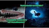 Talasofobisi Olanlar Bakmasın! Okyanuslar Hakkında Tamamen Gerçek Olan Birbirinden Ürkütücü 13 Bilgi