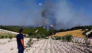 Manisa'da Anız Yangını Ormana Sıçradı