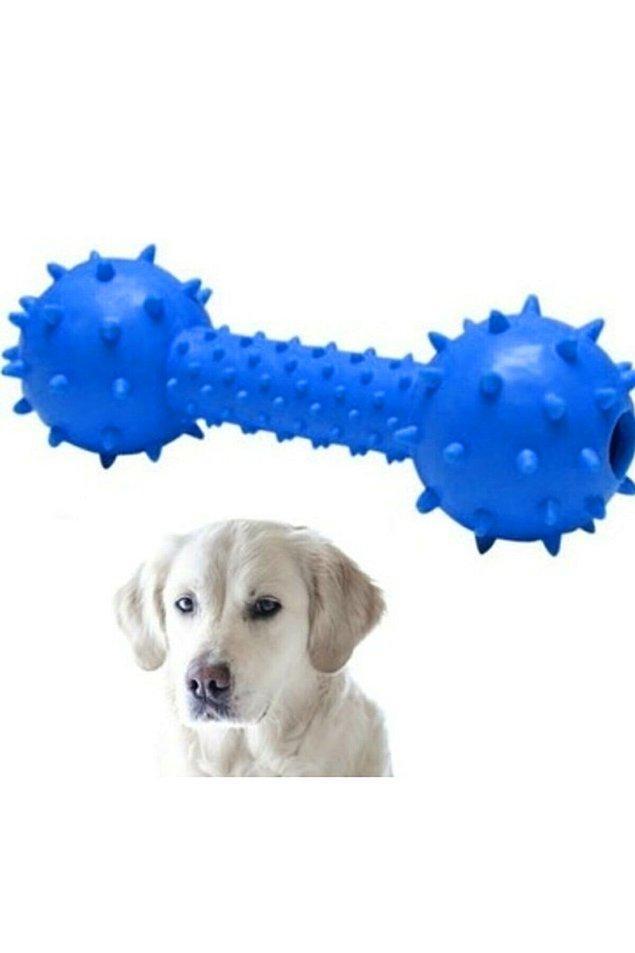 13. Köpek oyuncağı