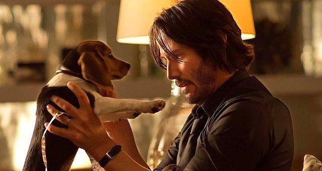 """7. """"Bir şirkette iş görüşmesine gittiğimde benden koridordaki kanepede beklememi istemişlerdi. Beklerken yanıma bir köpek geldi. Köpeği sevmeye başladım."""""""