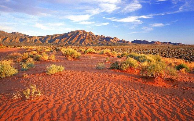 """17. """"Avustralya, uçsuz bucaksız bir çöl arazisidir."""""""