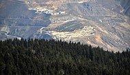 Türkiye'nin Ormanları Kuşatma Altında: 15 Şehrin Yüzde 62'si Maden İçin Ruhsatlandırılmış