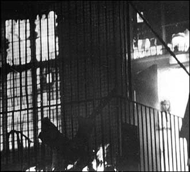 9. Tony O'Rahilly, 1995 yılında İngiltere Belediye Binası'nda çıkan yangını bu kareyle ölümsüzleştirdi...