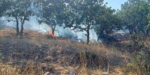 Çanakkale'de Orman Yangını: 10 Hektar Alan Zarar Gördü