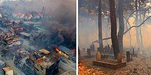 Ciğerimiz Yanıyor: Manavgat Yangınında Felaketin Boyutu Gün Ağarınca Ortaya Çıktı...