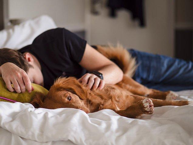 Lisa, araştırmaların düzenli olarak altı saatten az uyumanın uyku yoksunluğunun birçok olumsuz etkisi ile ilişkili olduğunu gösterdiğini açıklıyor.