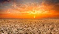 Küresel Isınma Nedeniyle 2100 Yılına Kadar 83 Milyon Kişi Ölebilir