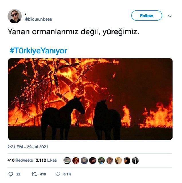 4. Sosyal medyada paylaşılan bir orman yangını fotoğrafının Türkiye'ye ait olduğu iddia edilmişti, fakat görüntünün doğru olmadığı ortaya çıktı.