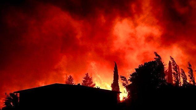 Ülke tarihimizin en büyük orman yangınlarından birini yaşadığımız bu günlerde, büyük ölçüde kontrol sağlanamadı.