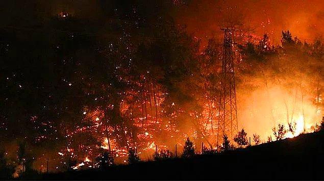 Bildiğiniz üzere ülkemizde günlerdir süren ve bir türlü kontrol altına alınamayan orman yangınları var.