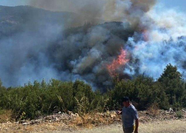 17:04 Aydın'da orman yangını başladı