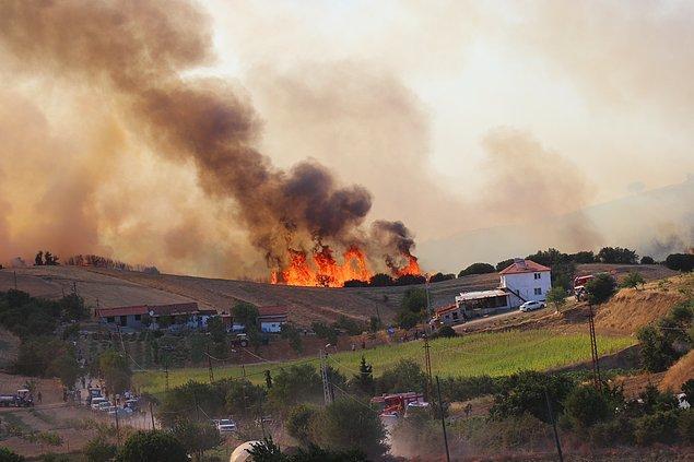 00:09 Denizli'nin Buldan ilçesinde çıkan orman yangın büyük oranda kontrol altına alındı.