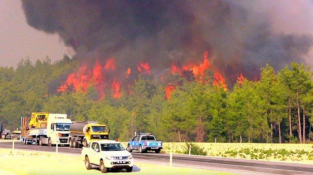 Günlerdir devam eden yangınlarda her anlamda ciğerimiz yanıyor.