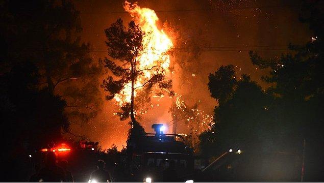Vatandaşlar ve görevliler canlarını hiçe sayarak büyük bir çaba sarf ediyor fakat yangın hala kontrol altına alınmış değil. Birçok bölgede ilerleyerek devam ediyor.