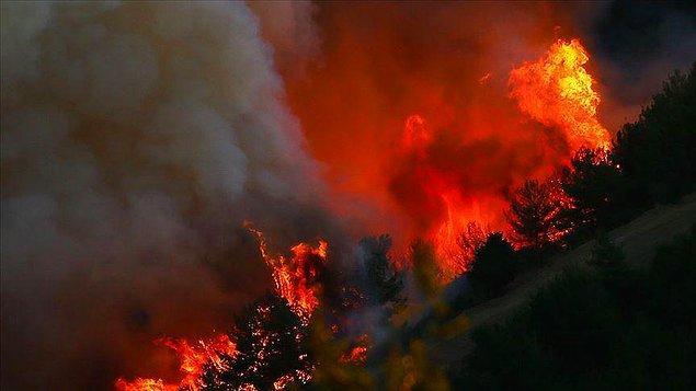 Bildiğiniz üzere ülkemizin dört bir tarafı günlerdir alevler içinde yanıyor ve bu durum hepimizi kahrediyor.