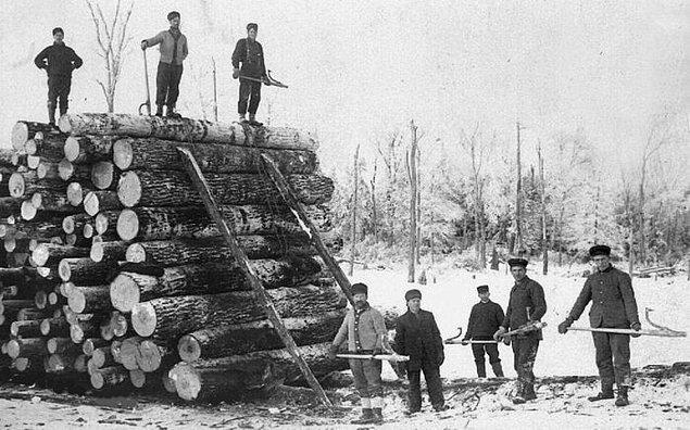 Peshtigo kereste endüstrisi, yangından kısmen sorumluydu.