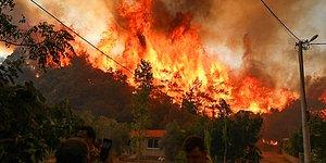 Canlı Blog | Manavgat'taki Yangınla İlgili Bir Kişi Tutuklandı