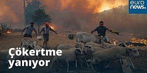 Çökertme'den Yürek Sızlatan Görüntüler: Halkın Çabaları Yetersiz Kaldı, Alevler Evlere Sıçradı