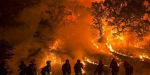 Kontrollü Yangın Çıkararak Felaketi Durdurabilir miyiz? Yangına Yangınla Karşılık Verme Yöntemi 'Karşı Ateş'