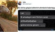 Pandemide Yabani Hayvana Dönenden A101'de Kasiyerlik Yapan Öğretmene Twitter'da Günün Viral Olan Paylaşımları