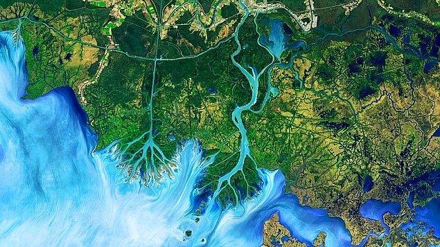1. Louisiana'daki Atchafalaya Deltası, 1 Aralık 2016