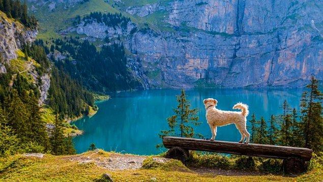 3. İsviçre'de 7000 tane göl bulunur.