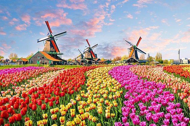 8. Hollanda'nın Zaanstad köyündeki Keukenhof Botanik Bahçesi; yel değirmenleri, evleri ve rengarenk lalaleri ile asırlardır süren bir geleneği yaşatıyor.