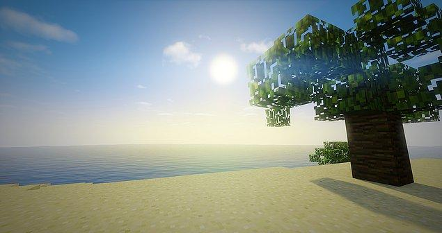 11. Minecraft