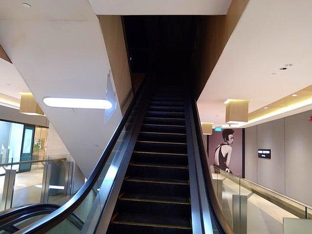 """8. """"Yürüyen merdiven sonsuz bir karanlığa çıkıyormuş gibi gözüküyor..."""""""