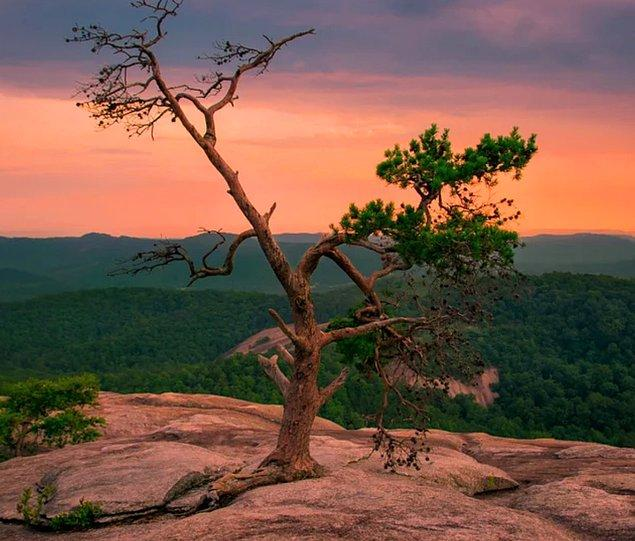 8. Kuzey Carolina'daki Stone Dağ'ında günbatımı: