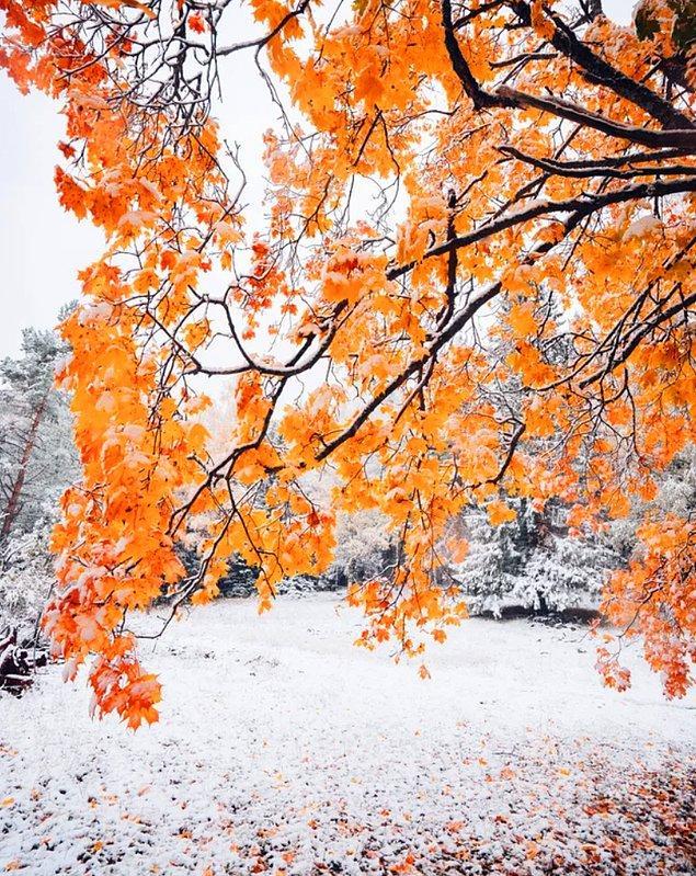 13. Kuopio'da sonbaharın kışla buluşması...