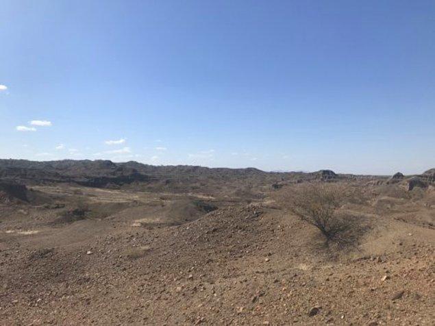 Kazı alanı, Turkana Gölü'nün yakınlarındaki küçük bir tepede yer alıyor.