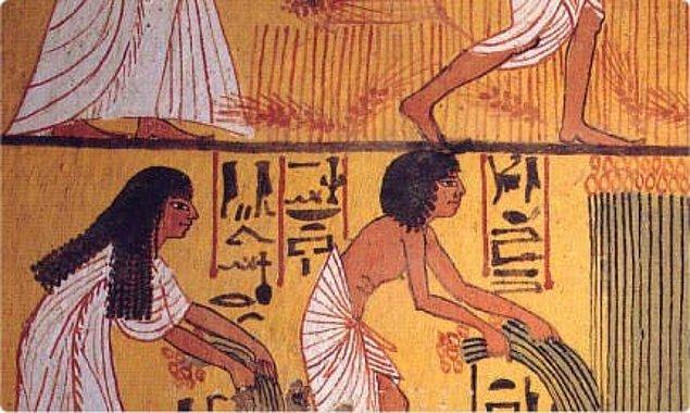 Eski Mısırlıların favori güneş koruyucu karışımı acı bakla, yasemin ve pirinç kepeğinden oluşuyor.