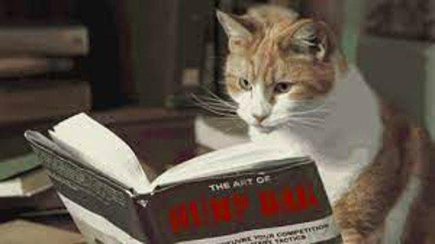 Hangi yazı türünü okumaktan daha çok zevk alırsın?