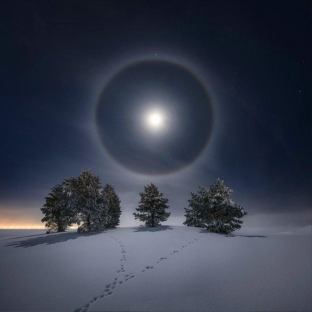 11. Karlı bir gece vakti Ay ışığının altında: