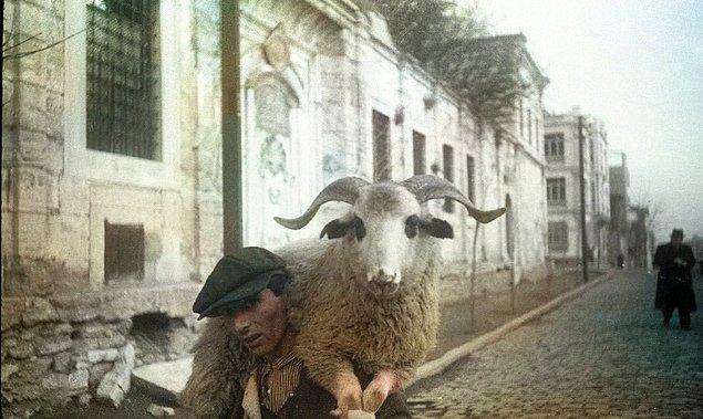 1. Beyoğlu'nda yorulmuş koyunu taşıyan adam, İstanbul, 1930.