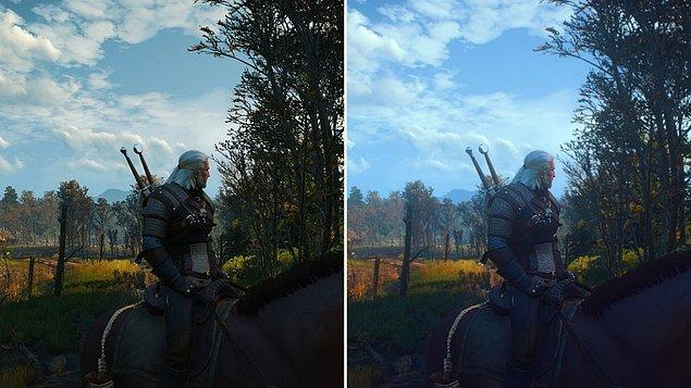 8. HD Reworked Project (The Witcher 3)