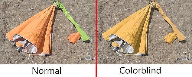 16. Normal biri (soldaki), renk körü olan biri (sağdaki) nasıl görür?
