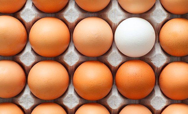 8. Tavuk ve yumurta